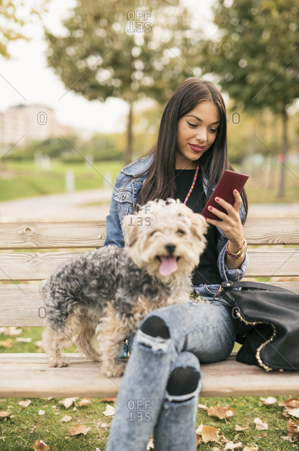 Young woman sitting on bench in a park with her dog looking at cell phone