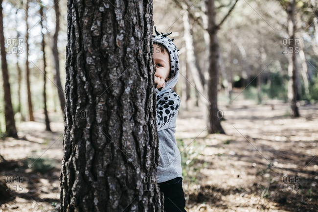 Little boy hiding behind tree trunk in the woods