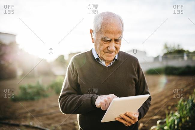 Senior man using tablet in the garden
