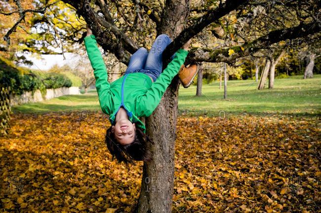 Girl climbing on tree in autumn