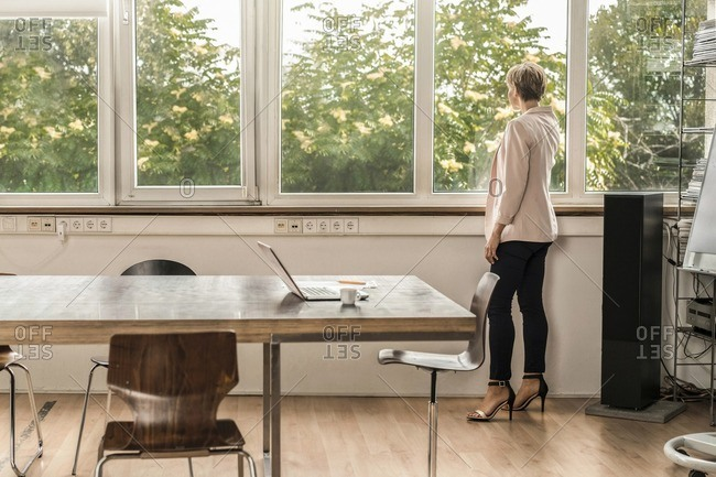 Businesswoman standing at the window in modern conference room