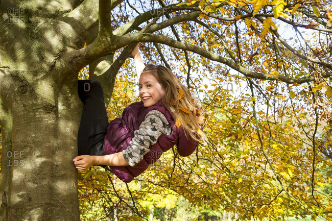 Girl climbing on tree in autumn