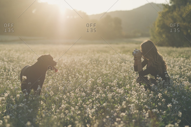 Young woman taking picture of her dog in field of flowers at twilight