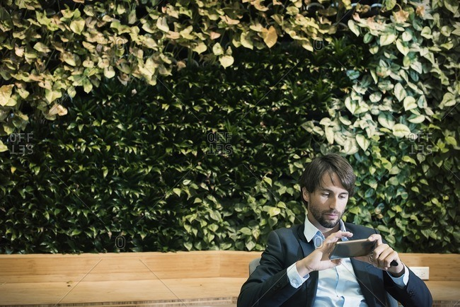 Businessman using digital tablet in front of plant wall