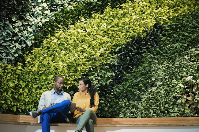 Businessman and woman sitting in front of green plant wall- using digital tablet