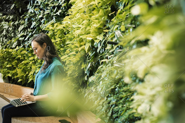Young woman using laptop in front of green plant wall