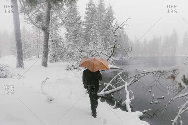 Person with umbrella in snowy rural setting