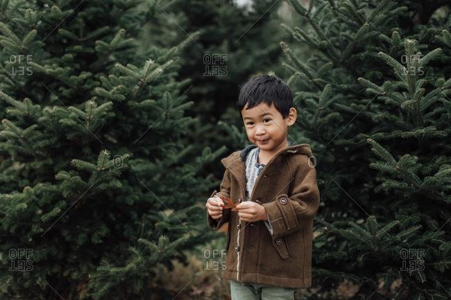 Young boy holding a leaf at tree farm