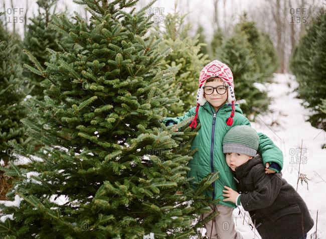 Two boys smiling in Christmas tree farm