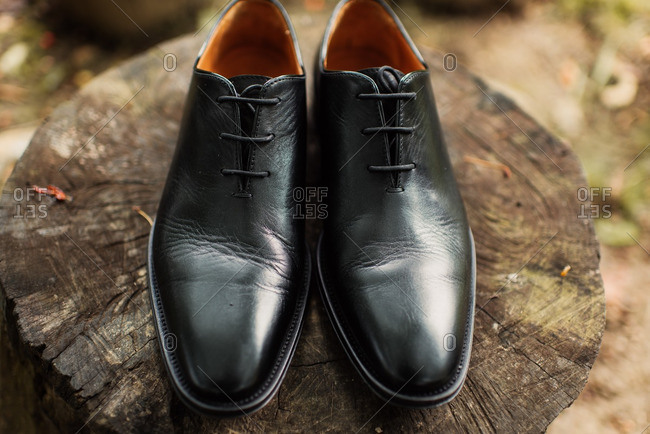 Men's pair of black leather dress shoes on tree stump