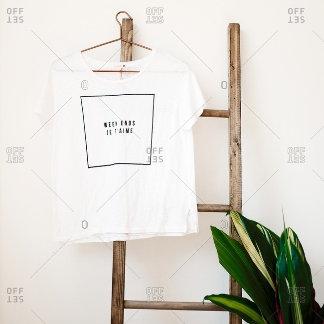 T-shirt hanging from a wooden ladder with a green plant