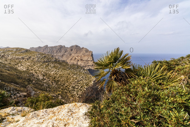 Coast of Majorca in the Balearic Islands, Spain