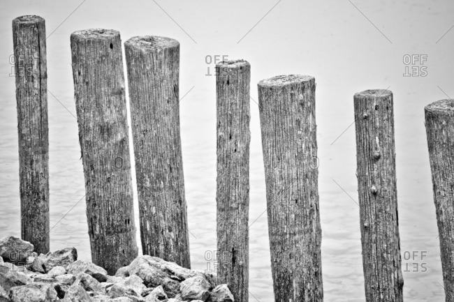 Wooden posts in the lake