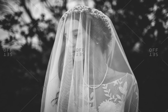 Bride wearing a veil and flower crown