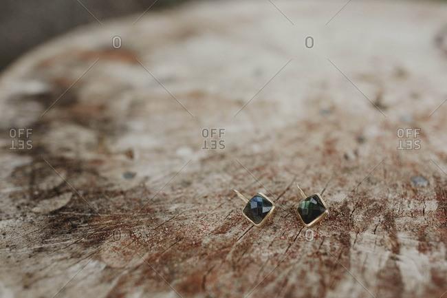 Faceted gemstone earrings on log