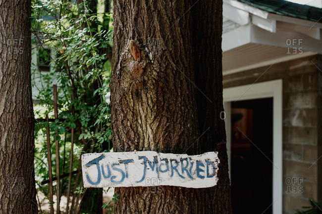 """Hand painted """"Just Married"""" sign on a tree"""