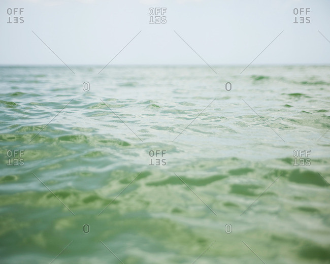 Waters off the shore of Progreso Beach in Yucatan