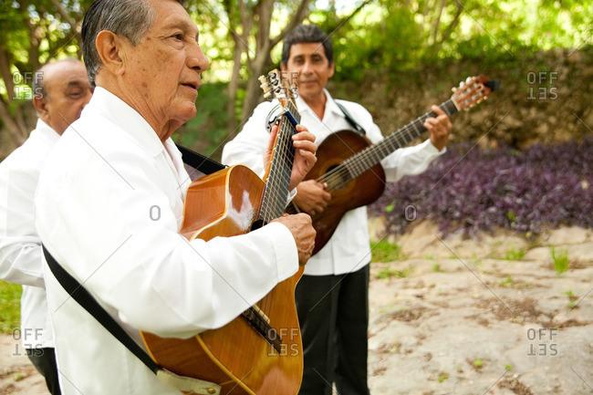 Mexico - June 25, 2011: Mariachi band playing at a wedding reception