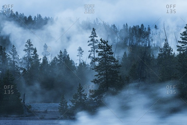 Scenic view of Yellowstone National Park during foggy weather