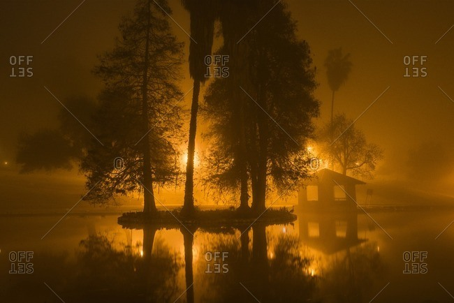 Scenic view of lake amidst trees during foggy weather