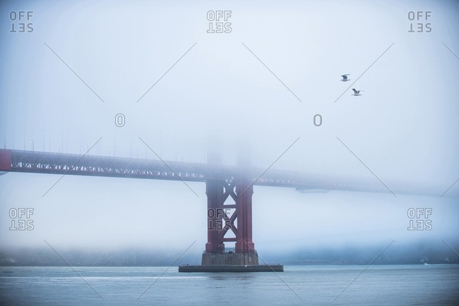 Golden Gate Bridge over bay during foggy weather