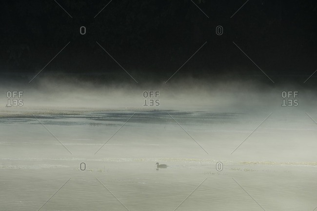 Scenic view of lake against clear sky during foggy weather