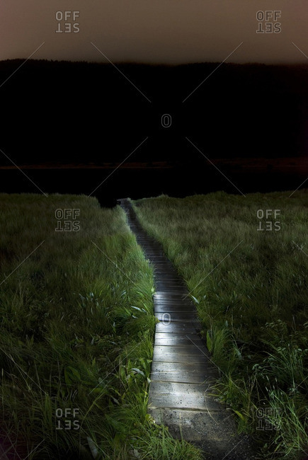 Footpath amidst grassy landscape