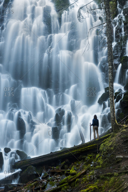 Low angle view of man standing on log while looking at waterfall in forest