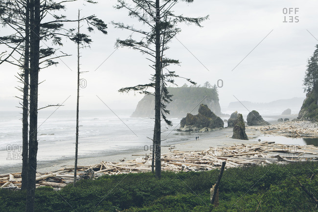 Scenic view of Ruby Beach against clear sky during foggy weather