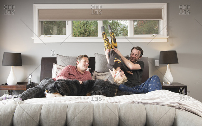 Caucasian fathers playing on bed with son and dog