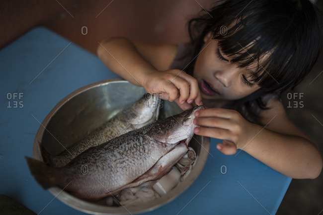 Boy looking at a fish in bowl