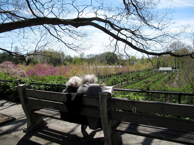 Older couple on bench by Brooklyn botanical gardens