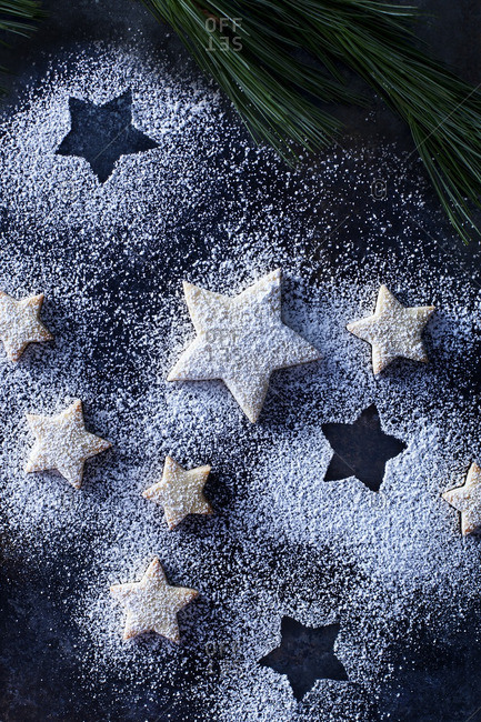 Star cookies dusted with confectioner's sugar