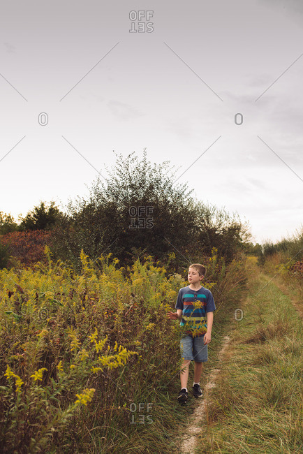 Boy walking on trail through field
