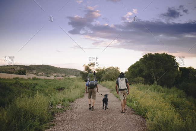 Rear view of friends walking with dog while hiking in forest against sky