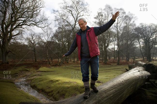 Retired Man Balancing on Tree