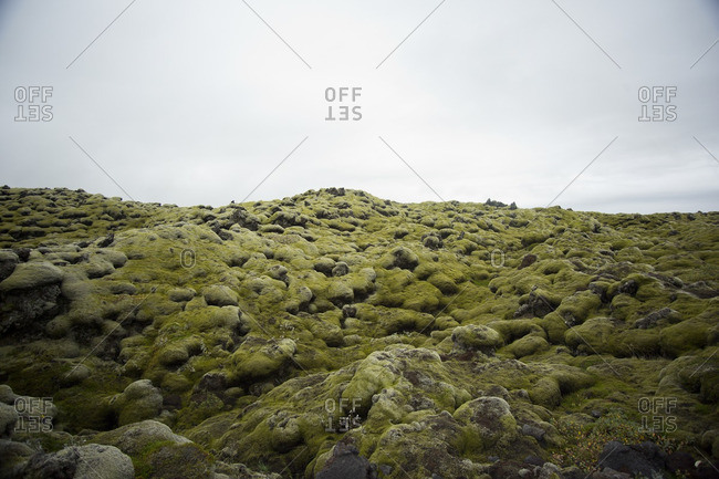 Moss covered lava field and overcast skies