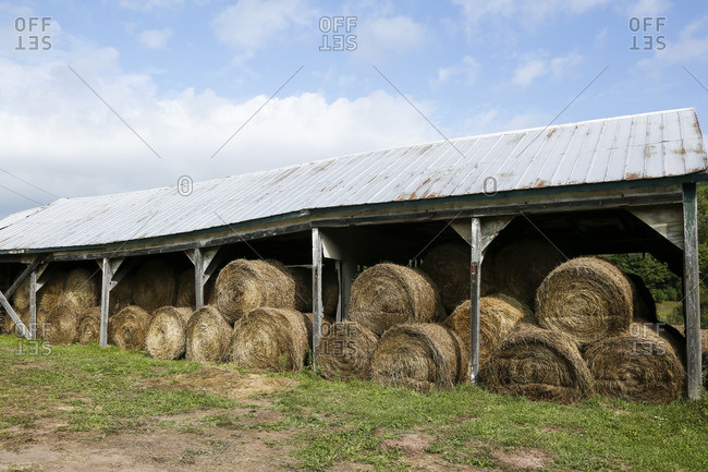 Round hay bales in rural shed