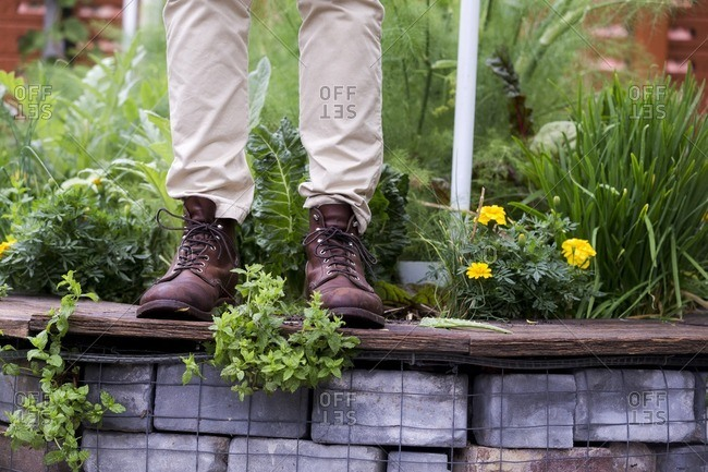 Man in work boots standing on wall of raised garden bed
