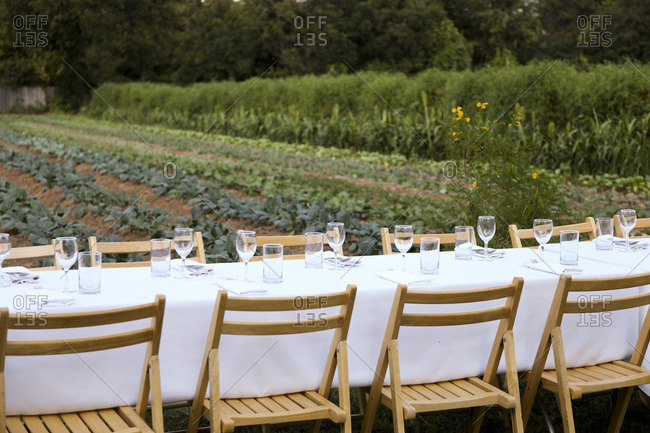 Long table set for outdoor dinner with white tablecloth and glasses