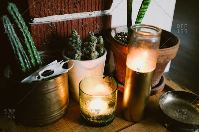 Candles and potted plants