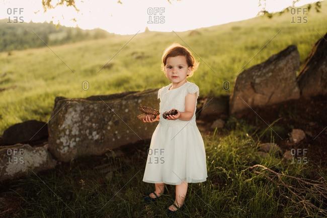 Toddler girl standing on a hillside holding pine cones