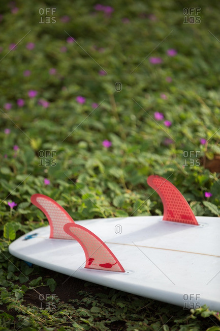 Red fins on a white surfboard