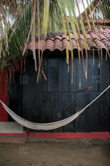 Hammock hanging under palm tree by building