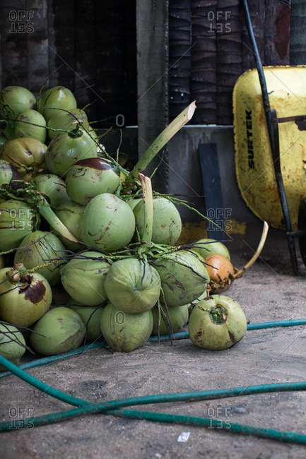 Pile of fresh coconuts on a city street