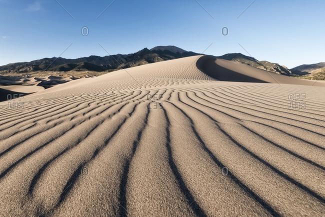 Natural pattern on sand dunes