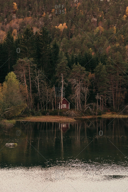 Rustic small cabin in woods at edge of lake