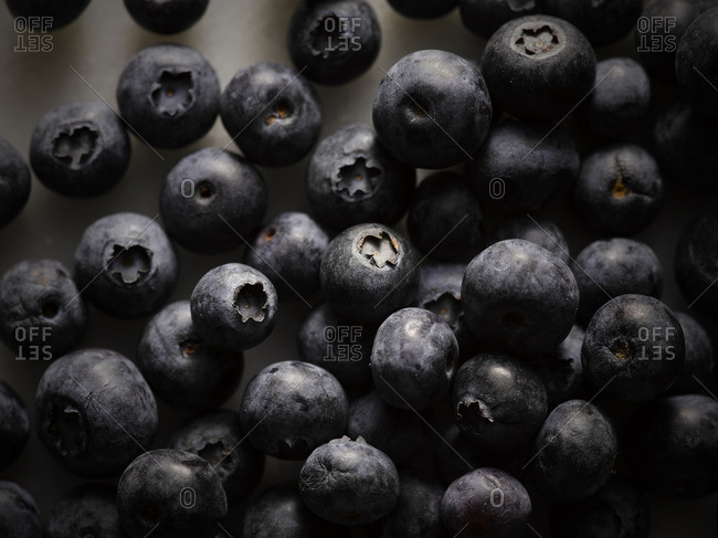 Blueberries in a close up