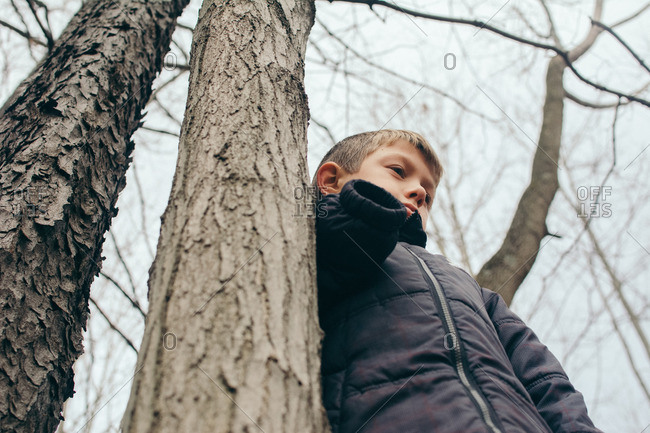 Low angle view of boy standing in a bare tree