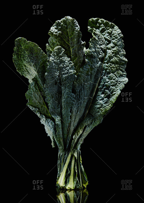 Kale bundle with black background